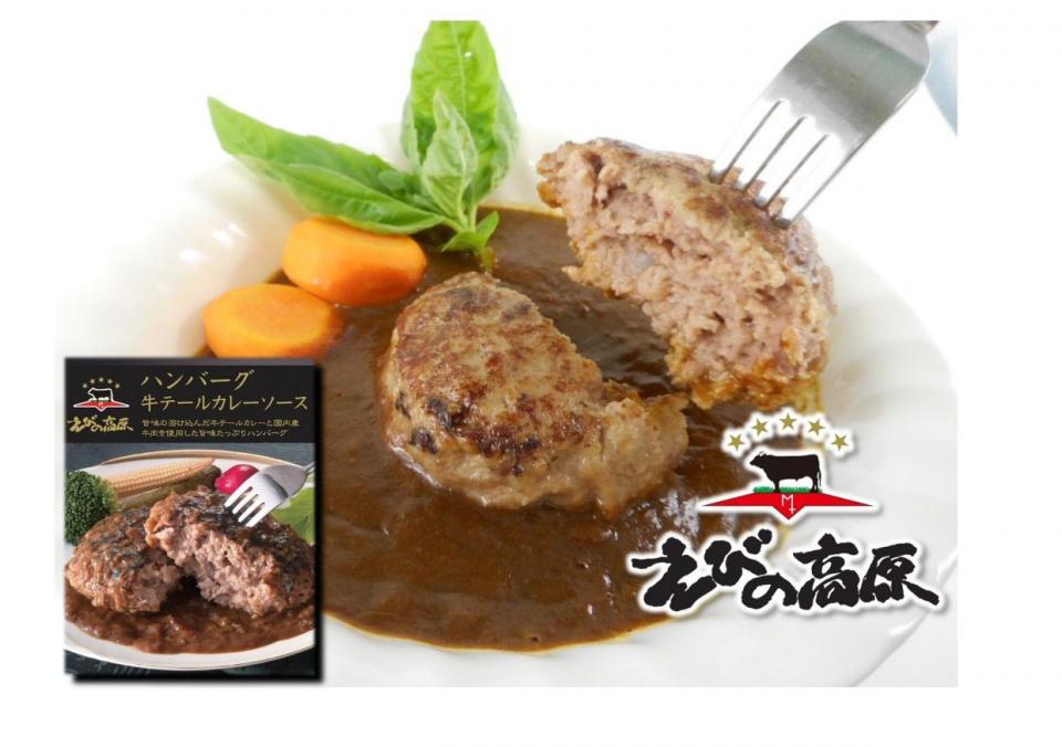 ハンバーグ牛テールカレーソース